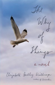 WHY_OF_THINGS_cover